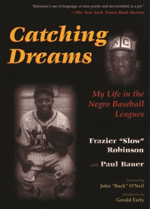Cover for the book: Catching Dreams