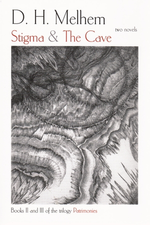 Cover for the book: Stigma and the Cave