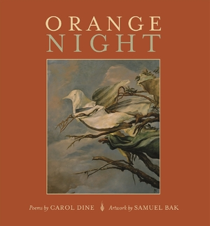 Cover for the book: Orange Night