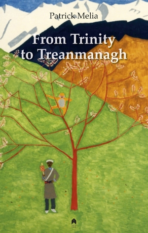 Cover for the book: From Trinity to Treanmanagh