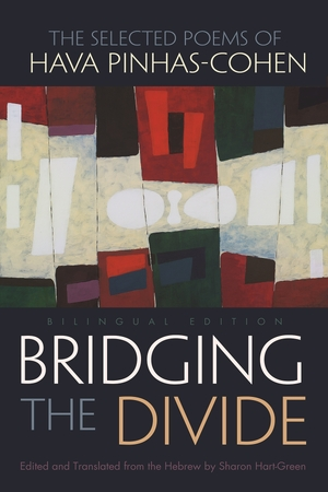 Cover for the book: Bridging the Divide