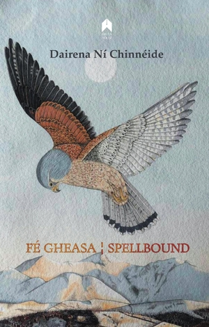 Cover for the book: Fé Gheasa / Spellbound