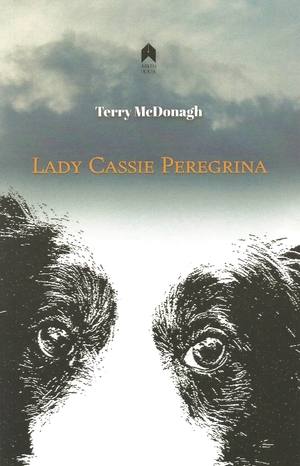 Cover for the book: Lady Cassie Peregrina
