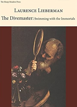 Cover for the book: Divemaster, The