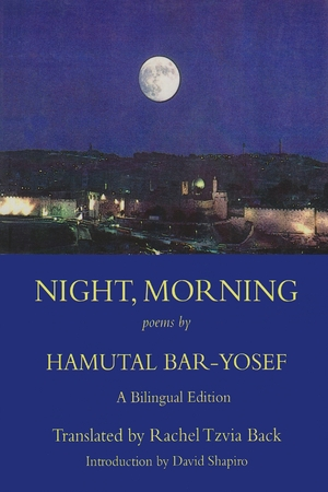 Cover for the book: Night, Morning