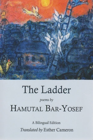 Cover for the book: Ladder, The