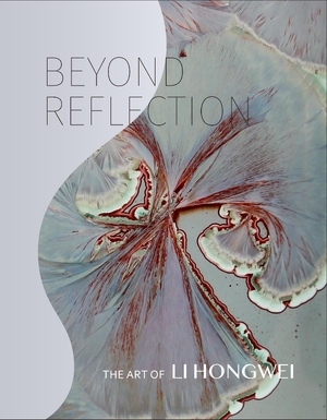 Cover for the book: Beyond Reflection