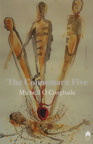 Cover for the book: Connemara Five, The