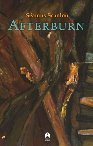 Cover for the book: Afterburn