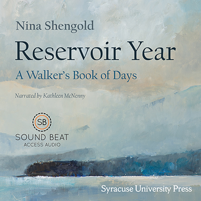 cover for the audiobook: Reservoir Year
